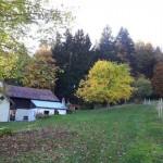 breitenberg-tierparadies-zaun-150x150 Gnadenhof für alte Hunde in Breitenberg - Tierparadies