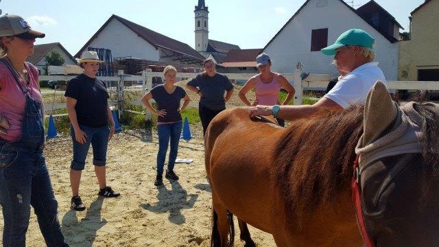 Ketu-beim-Einsatz-in-der-Pferdeheilpraktiker-Schule-im-Juli-2017 Homöopathie für Pferde - Seminare in Wardenburg