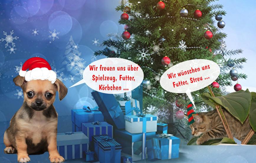 Tierweihnacht-2017-im-tierschutzligadorf Veranstaltungen - Tierschutzliga Dorf
