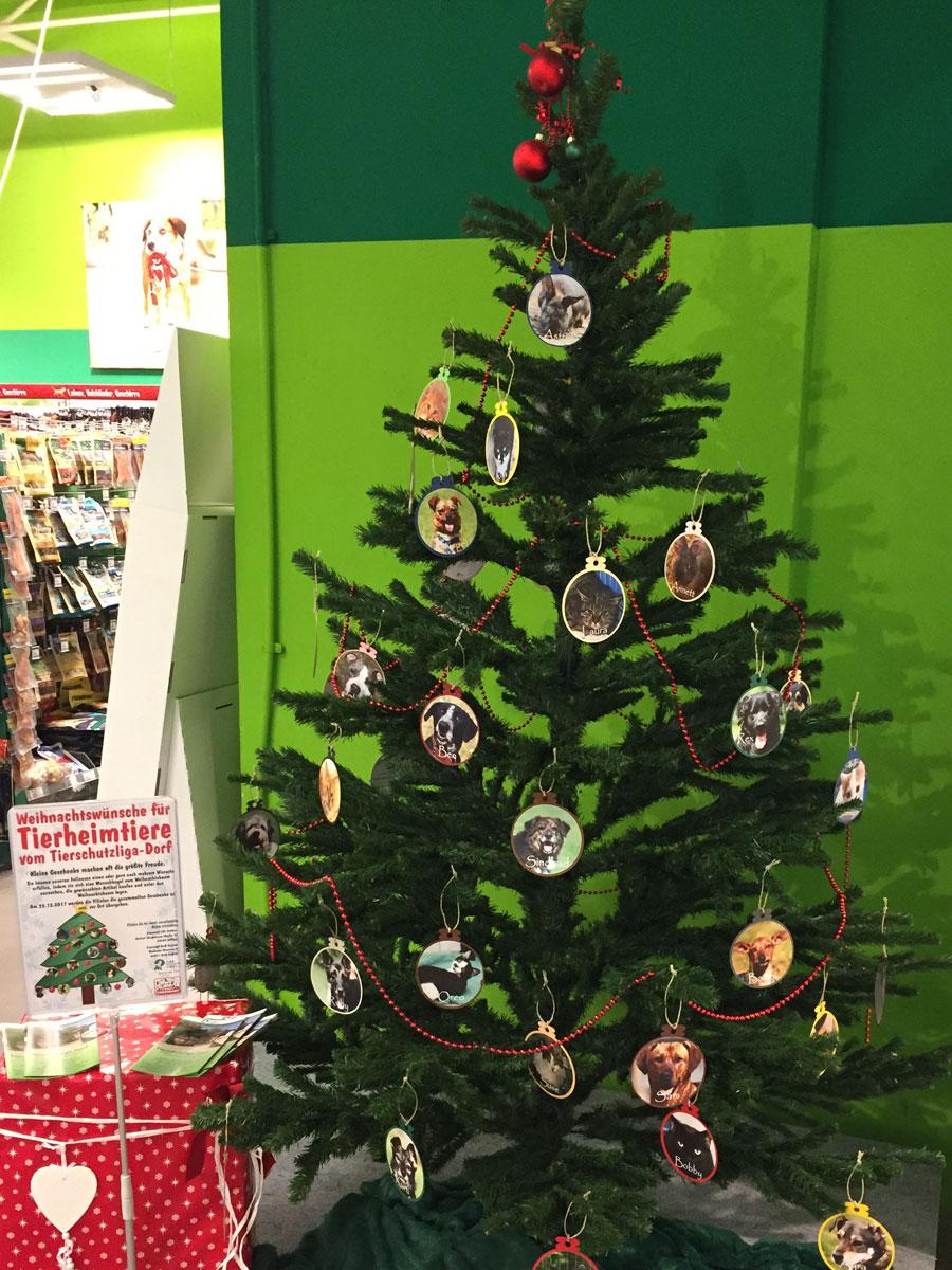 Weihnachtsbaum kaufen freising