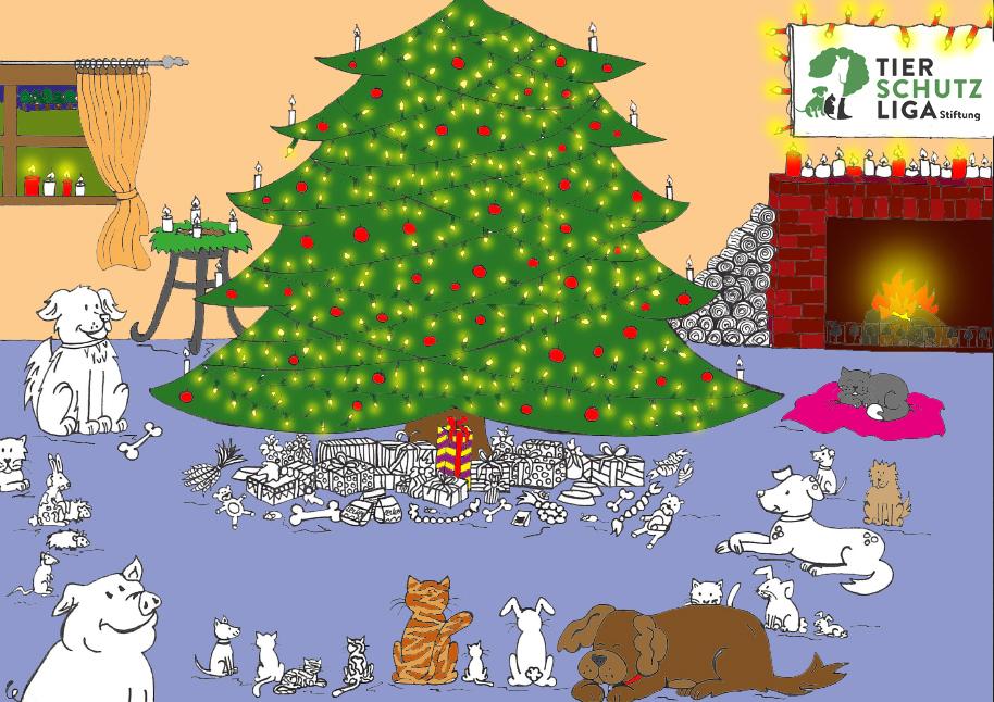 Spende Geschenke zu Weihnachten im Tierheim - Tierschutzliga Stiftung