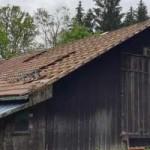 breitenberg-umbau-gnadenhof-alte-hunde-scheune-150x150 Tierparadies Breitenberg - Mach mal was Nachhaltiges für den Tierschutz