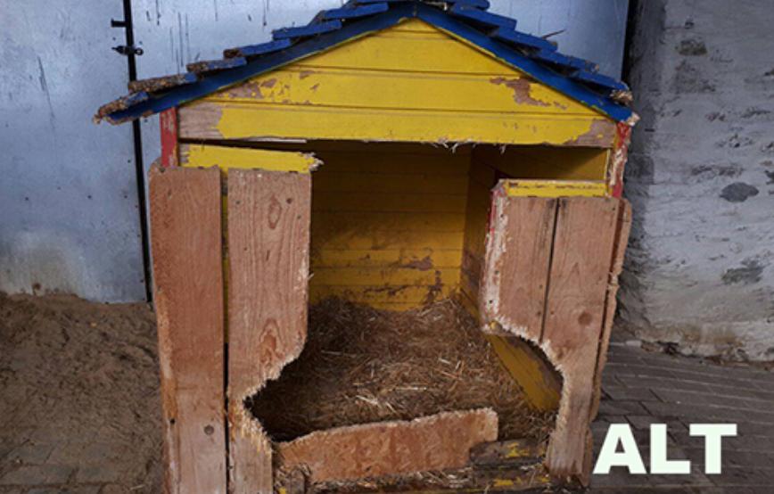 beitragsbild-alte-hundehütte-kaputt Unterstützen Sie das Tierheim Unterheinsdorf