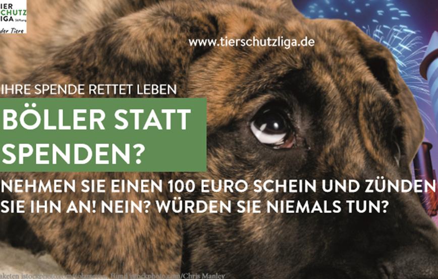 beitragsbild-silvester-2017 Startseite Tierschutzliga Stiftung