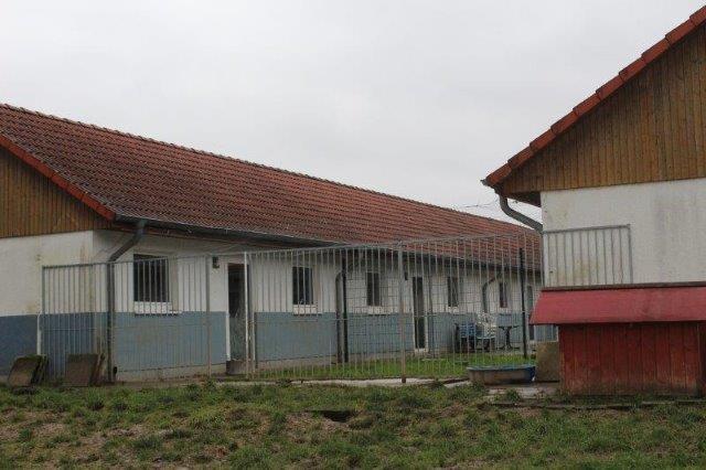Tierheim Bückeburg