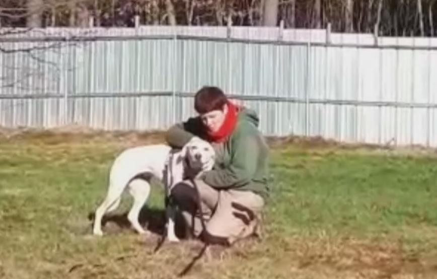 beitragsbild-angsthund-wiese-toben-piper-tagebuch-tag16 Vom Angsthund zum glücklichen Hund
