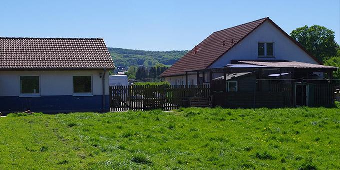 tierheim-bueckeburg-tierheim Unsere Tierheime im Norden