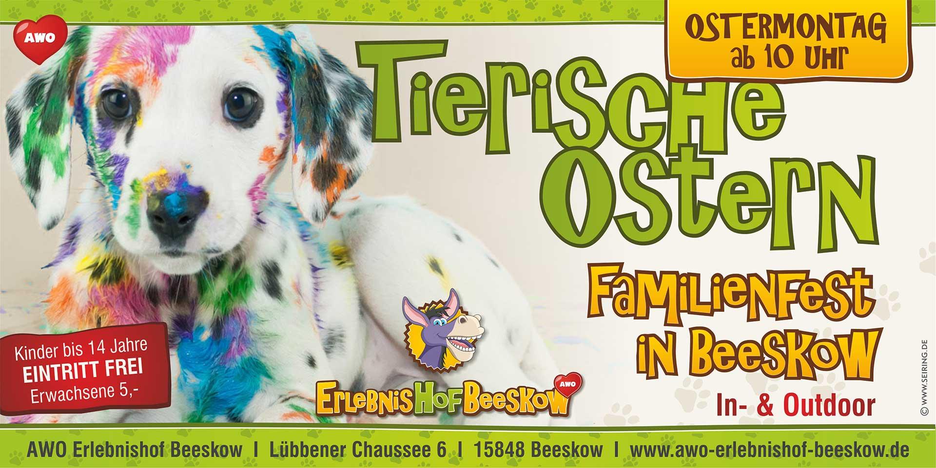 tierische-ostern-beeskow-Bild Veranstaltungen - Tierschutzliga Dorf