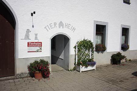 tierheim-unterheinsdorf-eingangstuer Das Tierheim Unterheinsdorf