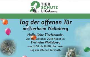 tag-der-offenen-tuer-wollaberg-2018-beitragsbild Aktuelles - Tierheim Wollaberg