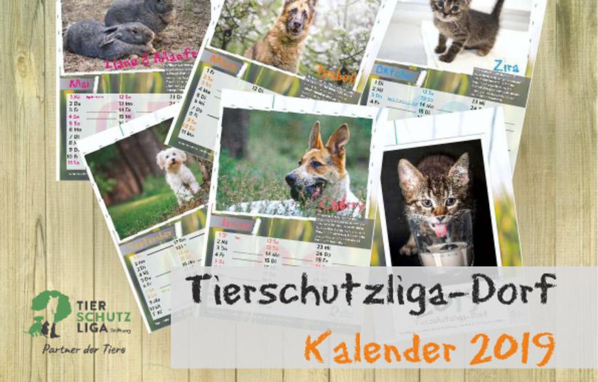 Beitragsbild-Tierschutzkalender-2019 Tierschutzliga-Dorf