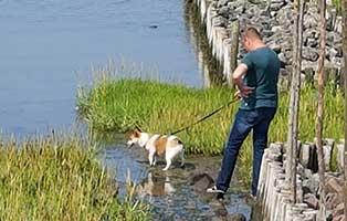 gonzo-hund-erster-urlaub-wasser Gonzos erster Urlaub mit Familie