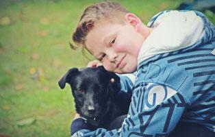 ich-will-einen-hund Ich will einen Hund ...