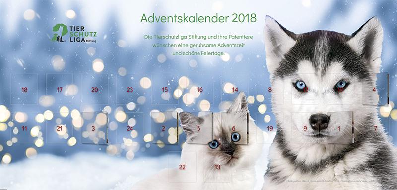 adventskalender popupbild