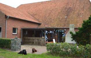 wunschzettel-wardenburg-neu Zu den Wunschlisten unserer Tierheimtiere