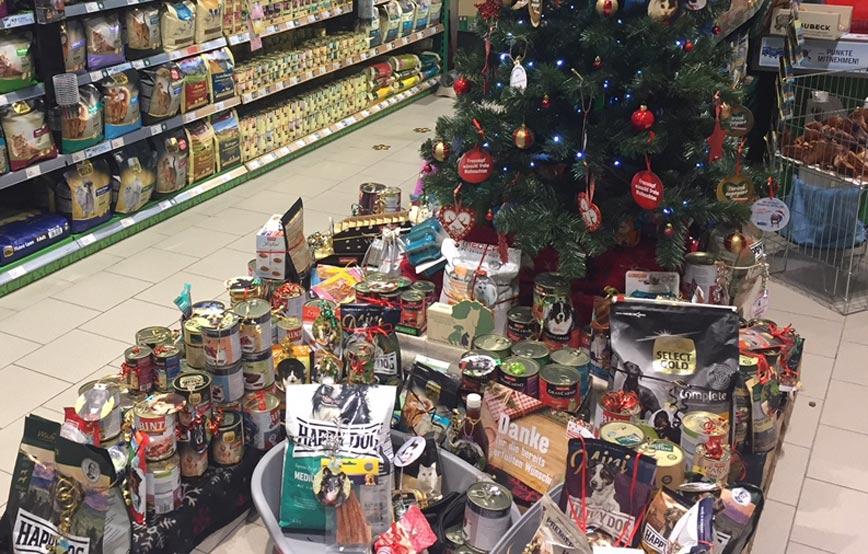 Spendenberge-vor-dem-Weihnachtsbaum Katzenstation Freising
