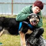 hund-hasso-verstorben-pflegerin-streichelt-150x150 Hasso – in Liebe gegangen
