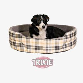 ratgeber-hunde-produkt-kosten Wie viel kostet ein Hund?