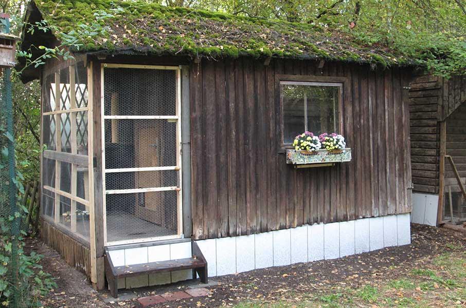 oberdinger-moos-katzenhaus Tierparadies Oberdinger Moos