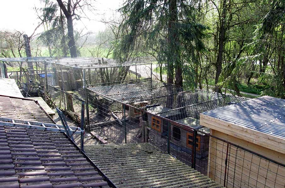 oberdinger-moos-staelle Tierparadies Oberdinger Moos