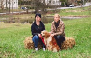 tierisch-tierisch-fernsehsendung-interwiew-hund Aktuelles - Tierheim Unterheinsdorf