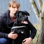 notfall-hund-cora-betreuerin-1-150x150 Cora - Boxer-Labrador