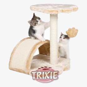 ratgeber-katzen-produkt-kratzbaum Wie viel kostet eine Katze?