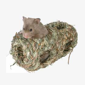 ratgeber kleintiere hamster produkt-grasnest