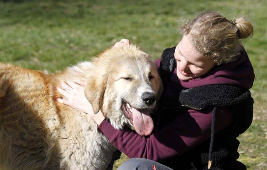 Hund-Manne-mit-Auszubildene Tierschutzliga-Dorf