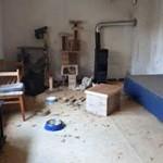 beschlagnahmung-ofen-150x150 22 Katzen und 8 Hunde aus der Hölle befreit – Leiden für das schnelle Geld