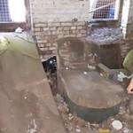 verwahrloste-hunde-befreit-unterbringung-150x150 5 verlassene Hunde suchen Notfall Paten