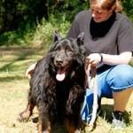 schaeferhund-charly-alt-betreuerin-150x150 Schäferhund Charly