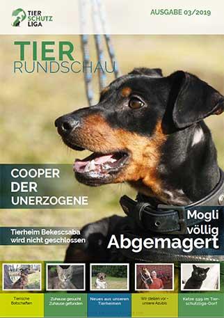 tierrundschau-03-19-titel Tierrundschau - aktuelles Tiermagazin