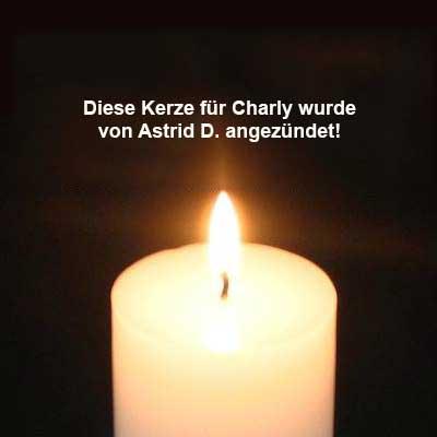 kerze-charly-Astrid-D-m Charly – zum Schluss warst Du glücklich
