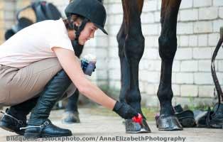 pferde-ratgeber-hufpflege Mama, ich will ein Pony ...