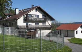 beitragsbild-anzeige Aktuelles - Tierheim Wollaberg