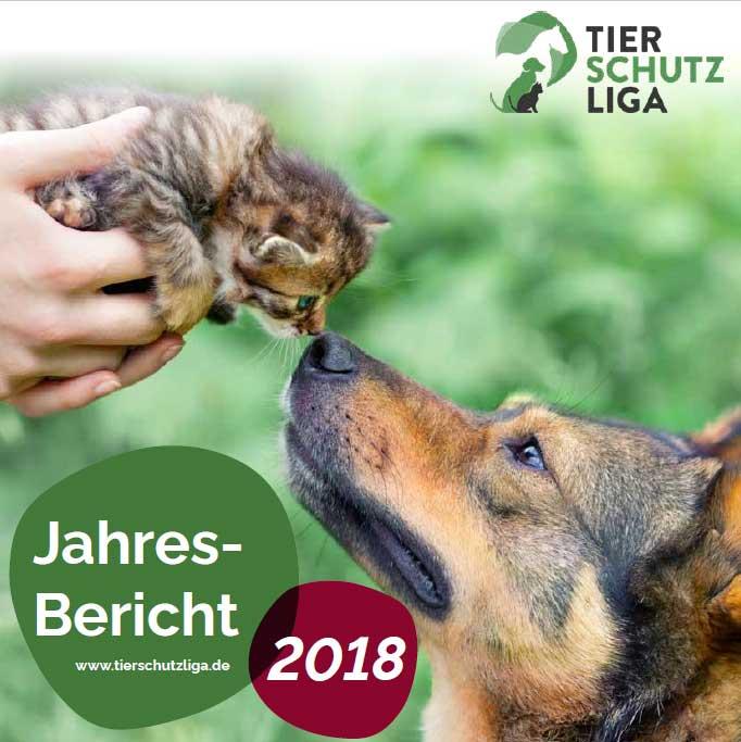 jahresbericht-2018-beitragsbild Zahlen