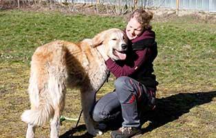 hund-manne-mit-pflegerin Wir bilden aus