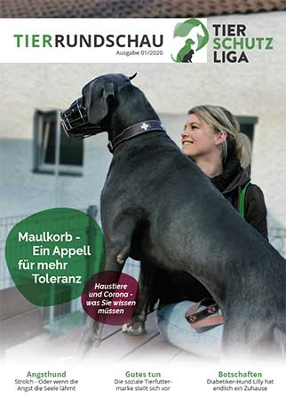 tr01-20-titel-2 Tierrundschau - aktuelles Tiermagazin