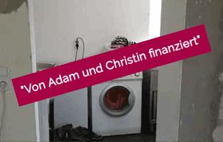 adam-laeuft-erledigt-netzschkau Hund Adam läuft – für die Tierschutzliga