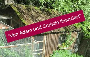 adam-laeuft-erledigt-oberdinger-moos Hund Adam läuft – für die Tierschutzliga