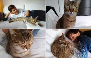 minouche-familie-kinder Glücklich vermittelt - Katzenstation München