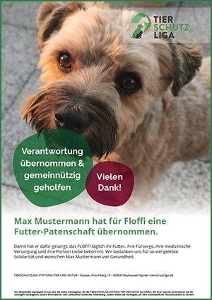 futter-patenschaft-urkunde-muster-floffi 3-monatige Futterpatenschaft übernehmen