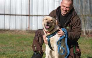 murmel-im-glueck-betreuer Elliot - alter Tierschutzhund möchte sich verabschieden und bedanken