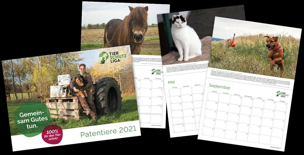 kalender-2021-werbung TIERSCHUTZLIGA Tierheim Weihnachtsspende