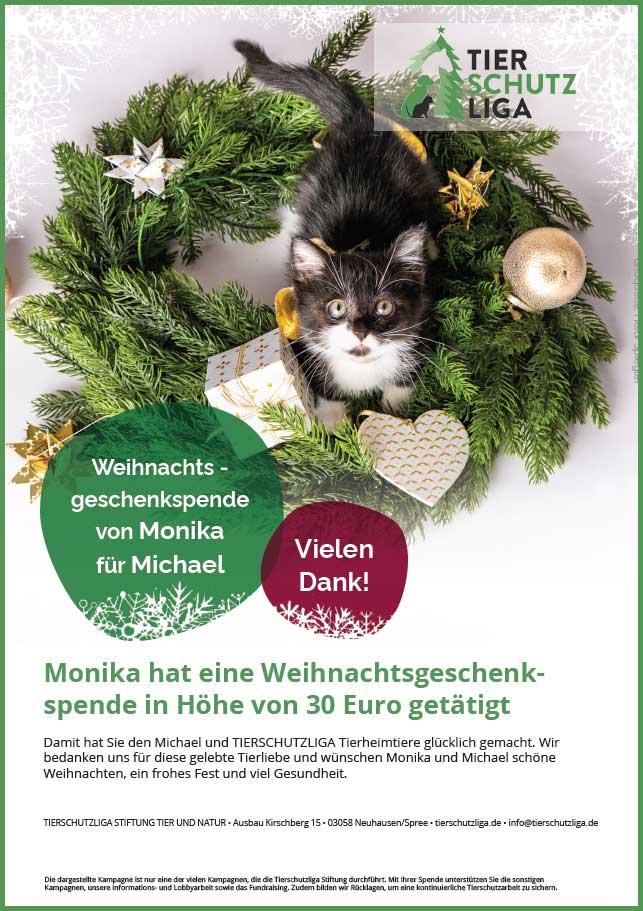 wehnachtsgeschenk-urkunde TIERSCHUTZLIGA Tierheim Weihnachtsspende