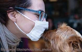 ansteckung-hund-mensch 18 verwahrloste Katzen mussten gerettet werden