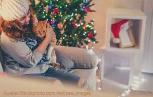katzen-weihnachten-frau-kamin 18 verwahrloste Katzen mussten gerettet werden