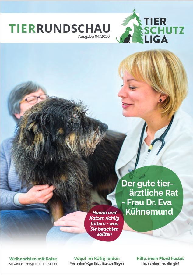 titel-tr-04-2020 Tierrundschau - aktuelles Tiermagazin
