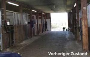 boxenstall-vorher-jahresbericht-wardenburg-2019-300x191 Jahresbericht Tierschutzhof Wardenburg 2019